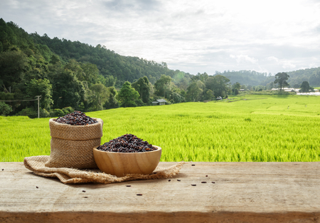 Rice berry in bowl and burlap sack on wooden table with the rice field background Stockfoto
