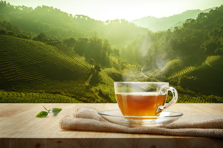 Warm cup of tea and tea leaf and sack on the wooden table and the tea plantations background