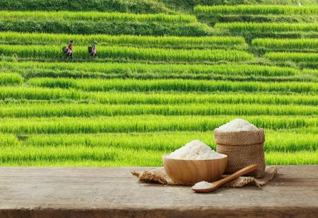 Jasmine Rice en tazón y saco de arpillera en la mesa de madera con el fondo de campo de arroz