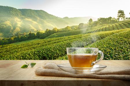 Taza de té caliente con el saqueo en la mesa de madera y el fondo de las plantaciones de té