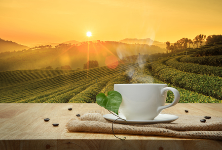 Coffee cup with burlap on the wooden table and the Plantations background Foto de archivo