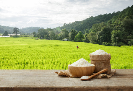 Jasmine Rice in bowl and burlap sack on wooden table with the rice field background