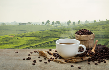 나무 테이블에 커피 콩과 농장 배경으로 뜨거운 커피 컵
