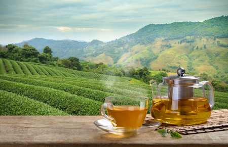 Warm cup and glass jugs or jars of tea and tea leaf and sack on the wooden table and the tea plantations background