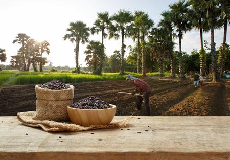 Rice bessen in kom en zak op houten tafel met de rijst veld achtergrond