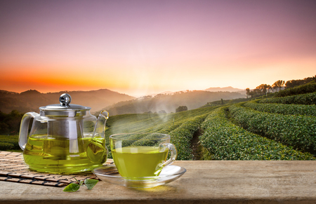 daybreak: Cup of hot green tea and glass jugs or jars and reen tea leaf on the wooden table and the tea plantations background