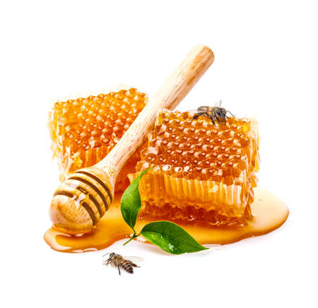 Honeycomb with bee and honey dipper isolate on white banner background, bee products by organic natural ingredients concept