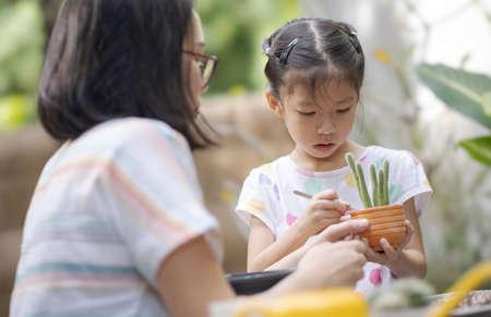 The little girl helps her mother working in cactus garden.