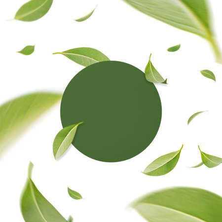 Flying whirl green leaves with frame concept