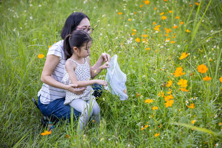In a flower field, Mother and cute little Asian girl finding  insects in the net. 免版税图像
