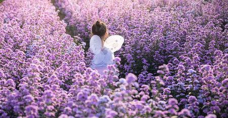 Asian little girl wear a magic ballet fairy costume in beautiful purple of margaret flowers field.