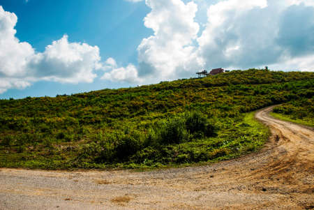 reclamation: a dirt road to the top of reclamation field with Mexican Sunflower and cloudy blue sky, Mae Mine, Thailand