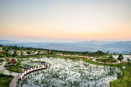 reclamation: a lotus pond in twilight, top of reclamation field, Mae Moh mine, Lampang, Thailand
