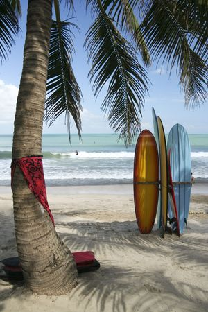 surfboards under a plam tree on kuta beach bai indonesia with surfers in background Stock Photo