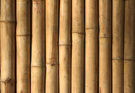 detail of bamboo wall in the philippines