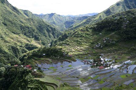 gradas: terrazas de arroz antigua de batad, norte de luzon en Filipinas  Foto de archivo