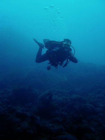 scuba diver  in sabang puerto galera mindoro the philippines photo