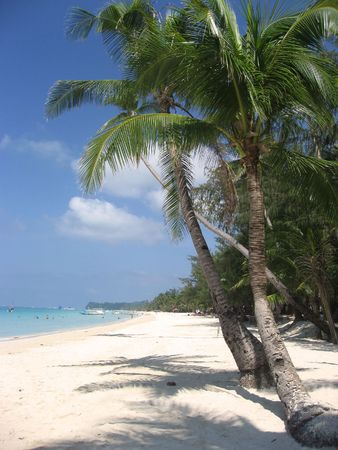 fine white sand beach of boracay in the philippines