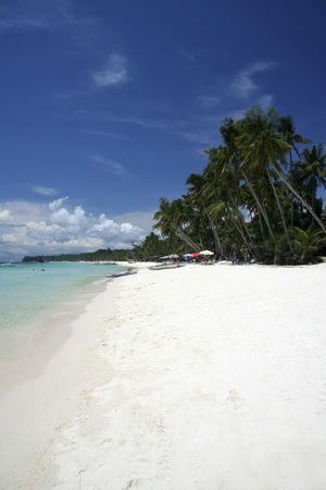 palms trees and white sand of boracay island in the philippines photo