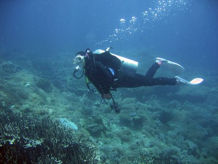 female diver exploring coral reef in the phillipines Stock Photo