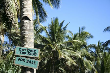 cottage for rent for sale sign on palm tree at edge of beach on tropical island in the philippines Stock Photo - 6558594