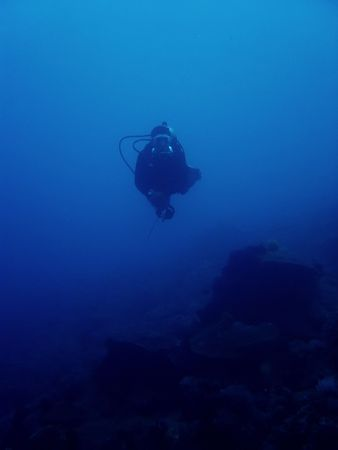 scuba diver drifts along reef in sabang puerto galera mindoro the philippines photo