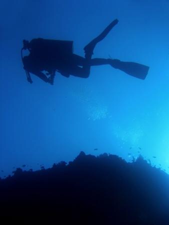 scuba diver in blue waters of sipadan island in sabah borneo photo