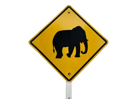 elephant crossing road sign black on yellow islolated against white background photo