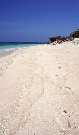 castaway: footprints in the blazing hot sand on beach in the philippines