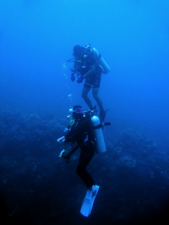 male and female divers descend over reef wall in sabang puerto galera the philippines