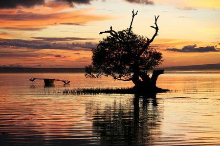 Traditionelle Banka Ausleger-Boot in Mangroven-Hintergrundbeleuchtung nach Sonnenuntergang, Siqijour Insel, Philippinen Standard-Bild - 6618235