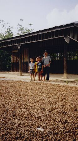 young boys on rural farm in battambang cambodia standing net to peanut harvest drying in the sun