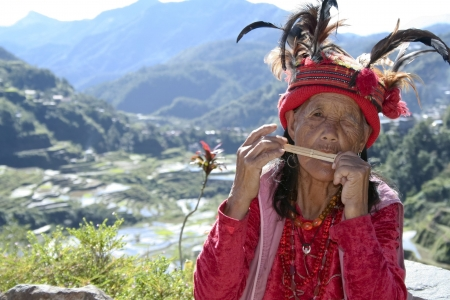 old ifugao woman playing musical instrument wearing traditional dress by the rice terraces of banaue in northern luzon in the philippines