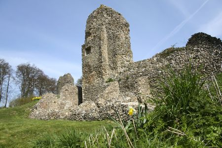 flint: ruined flint walls of berkhamsted castle in hertfordshire with spring daffodils and clear blue sky Stock Photo