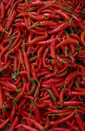 chiles picantes: lotes de frescos chillis picantes rojos grandes dispararon desde overhead mercado al aire libre en kota kinabalu malatsian borneo
