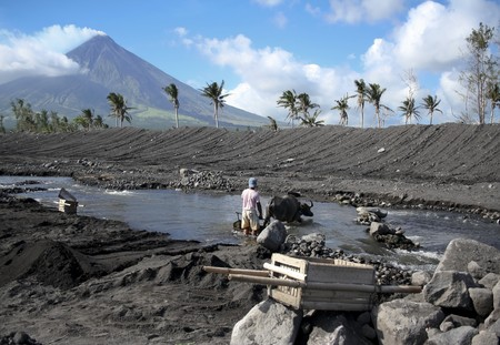 mayon: man working to clear river with water buffalo off debris from eruption of mount mayon in albay province luzon island in the philippines