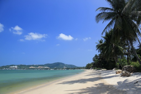 koh: Palmera forrado bophut playa cerca de la gran Buda en koh samui, en el Golfo de Tailandia
