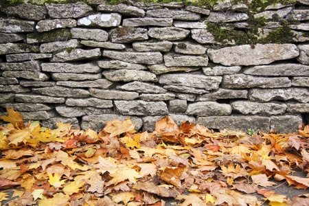 dry stone: fallen autum leaves lying on ground next to traditional dry stone wall in bilbury village in the cotswalds england