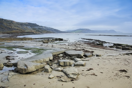 lyme: rocks on the beach of the jurassic coast in lyme regis dorset england