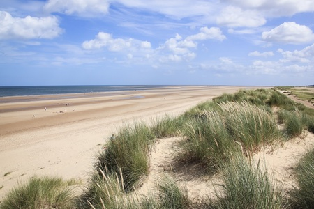 next horizon: marram grass growing on sand dunes overlloking sandy holkham beach in north norfolk england