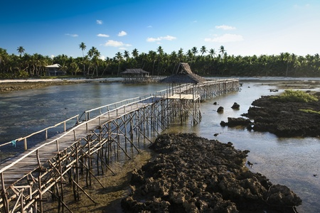 on cloud nine: raised wooden walkway for surfers to cross the reef of siargao island to cloud 9 surf break mindanao the philippines
