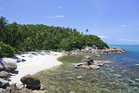 smalll hidden beach surrounded with palm trees lamai koh samui island in the gulf of thailand