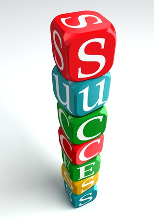 red building blocks: success 3d buzzword on white background