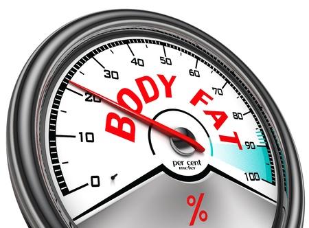 corps gras indicateur conceptuel isolé sur fond blanc Banque d'images