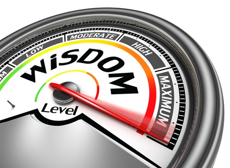 knowledge concept: wisdom level conceptual meter, isolated on white background Stock Photo