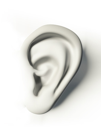 white human ear on white background photo