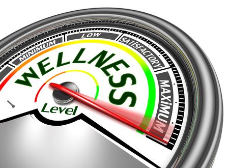 wellness conceptual meter indicate maximum, isolated on white background