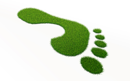 grass footprint ecology concept. clipping path included