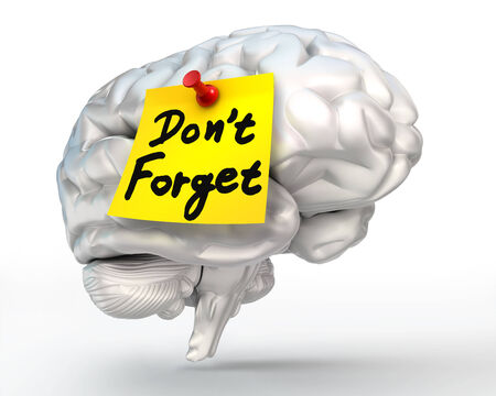 not to forget: do not forget reminder yellow note on brain conceptual image, clipping path included