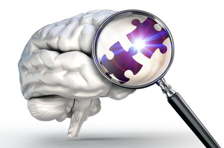 brain game: connection puzzle piece on magnifying glass and human brain on white background Stock Photo